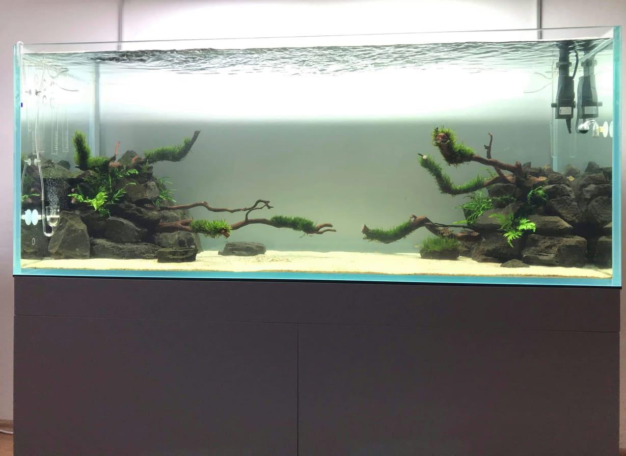 Galerie akvárií
