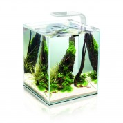 Aquael Shrimp Smart akvarijní set 29x29x35 cm, 30 l bílý