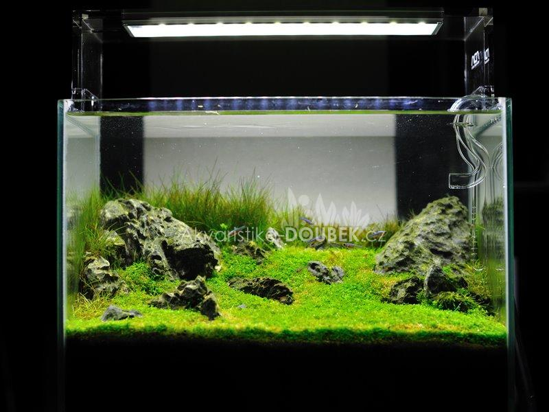 ADA Aquasky 361 LED Lamp - 36cm